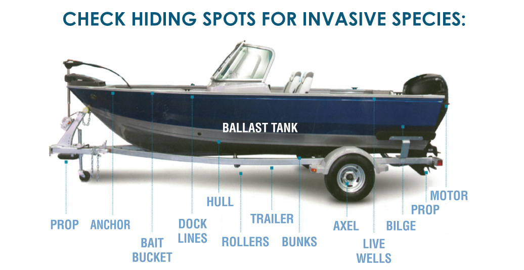 aquatic invasive species education Boat_Diagram