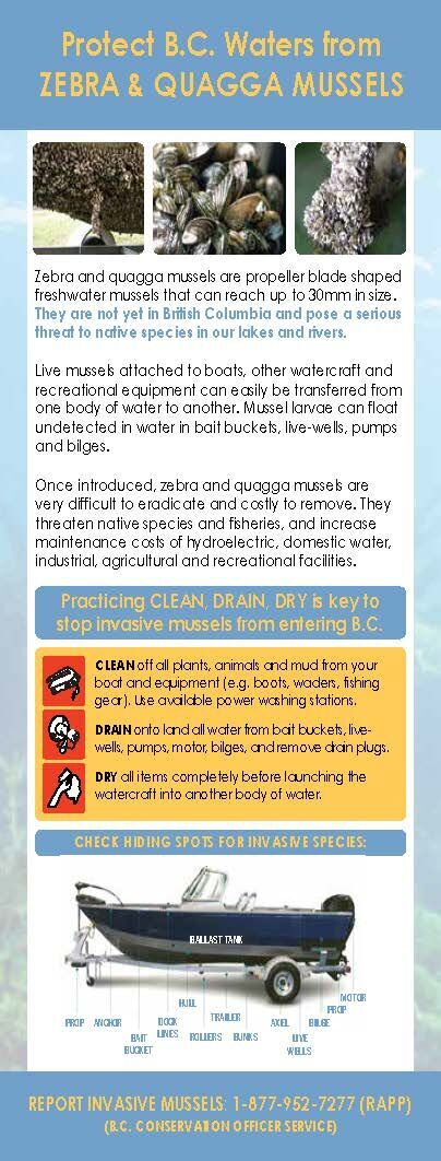 aquatic invasive species education DMM Resource pg_2017 Rack Card_back